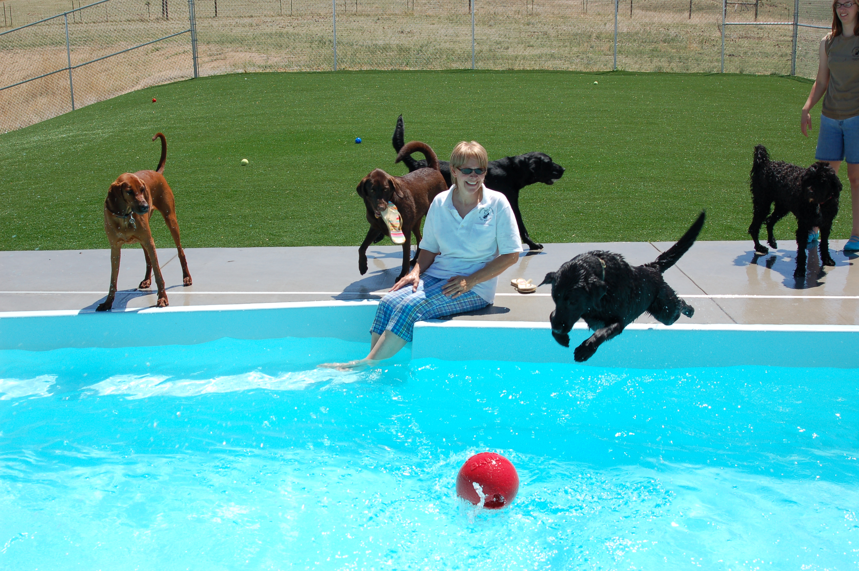 Inground pool companies san juan pools of colorado for Local swimming pool companies